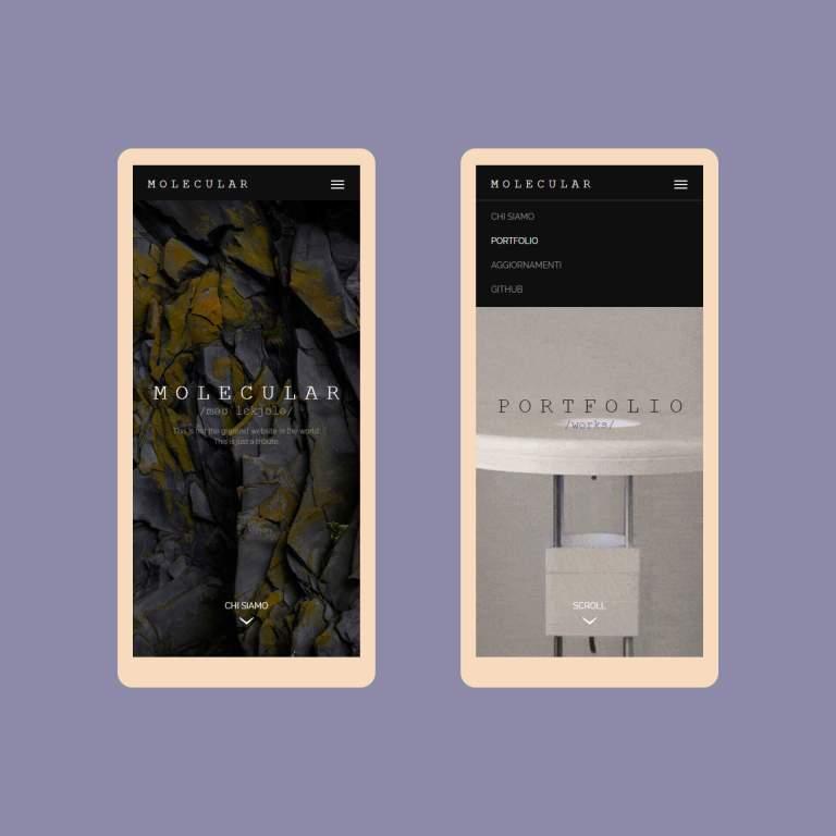 Sito Molecular Design Studio su Smartphone