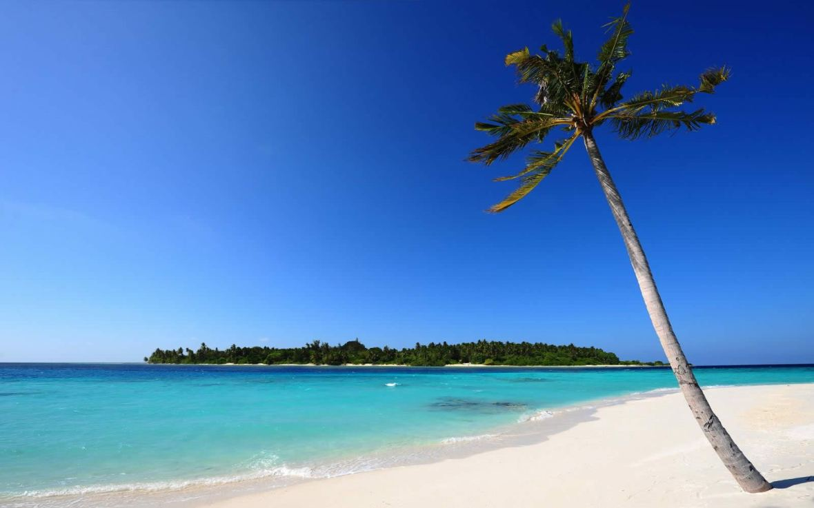 Image result for beaches in tanzania
