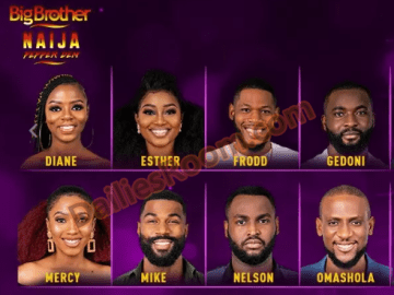 Steps To Big Brother Naija Vote Online At www.africamagic.tv/bbvote