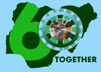 Nigeria At 60: 2020 Nigeria Independence Celebration - Nigeria@60 Logo