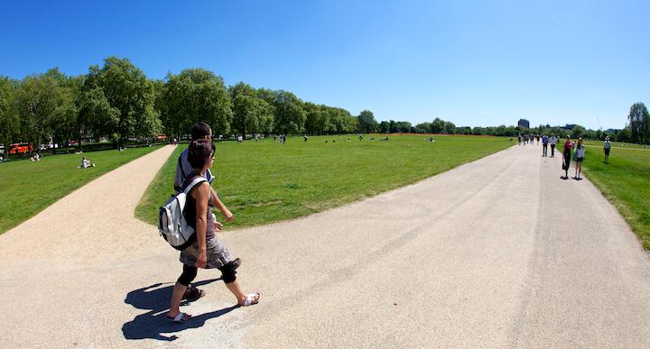 Wide Park