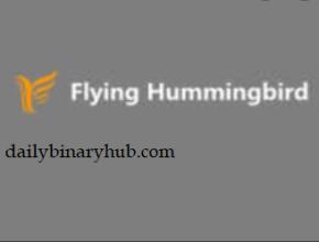 Flying Hummingbird Review