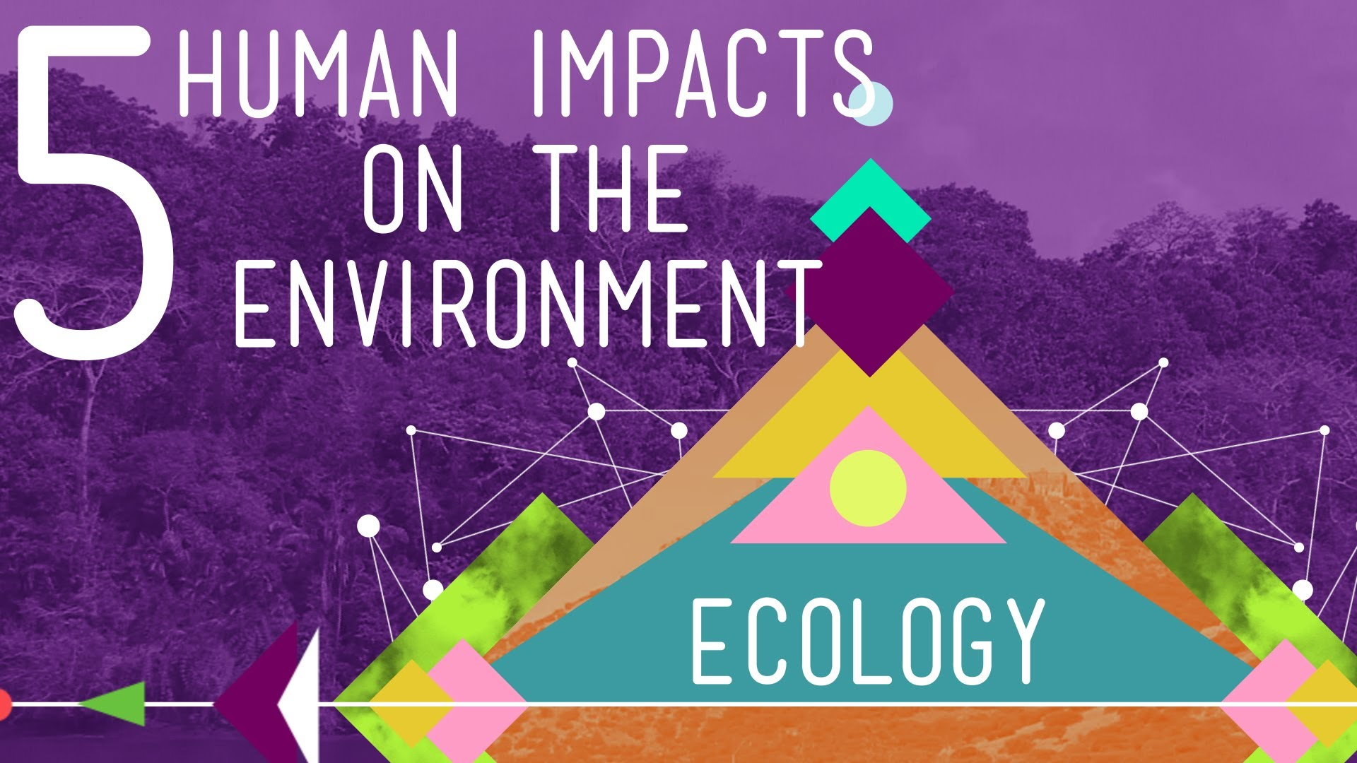 5 Human Impacts On The Environment Crash Course Ecology
