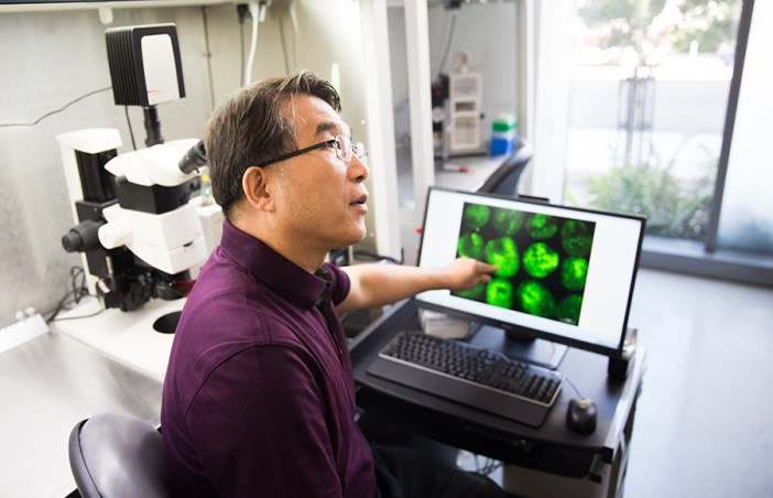 Myeong-Je Cho points to results from the lab's fluorescence microscope