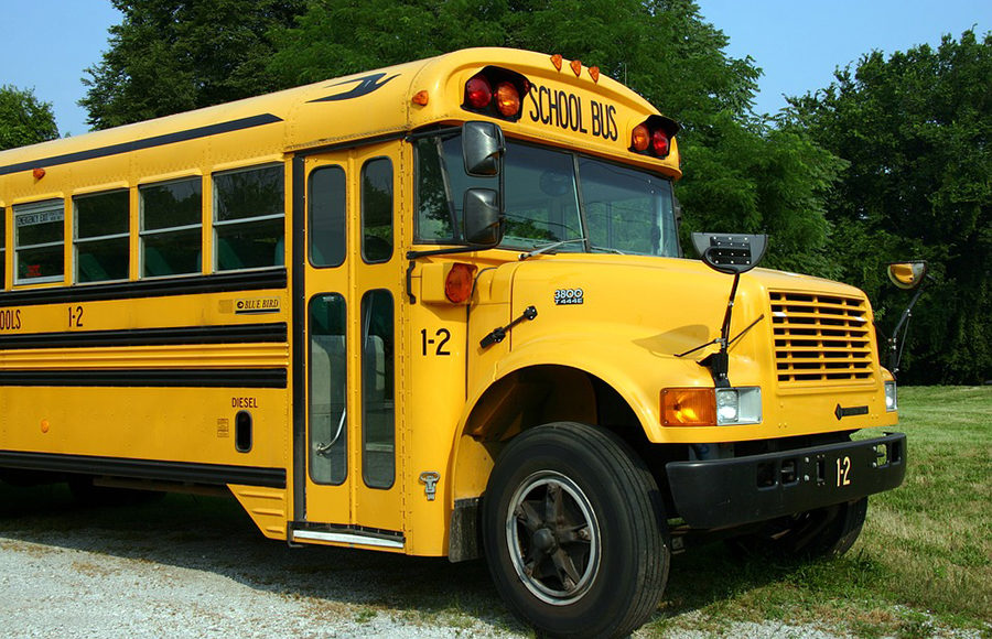 A yellow school bus parked on the grass.