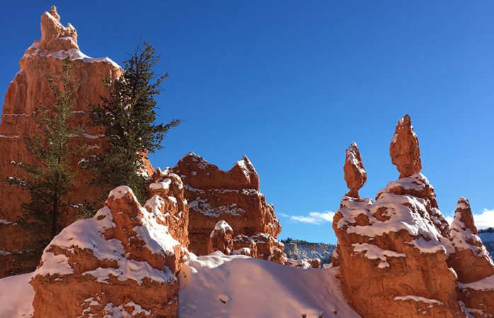 Bryce Canyon stands in the light of day while covered in snow.