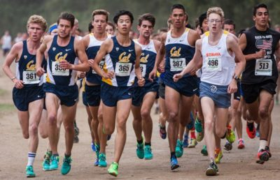 cal cross country recruits planning for fall season