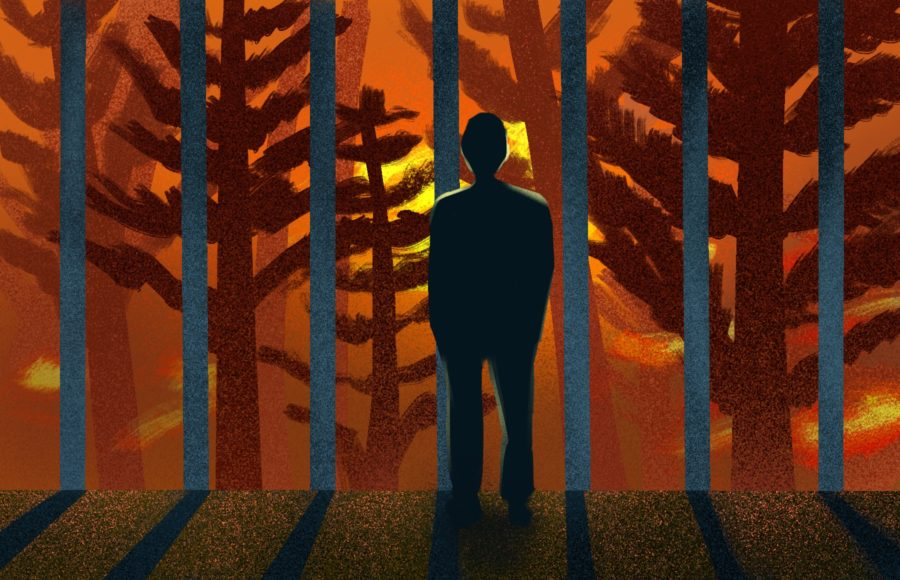 Illustration of a person watching a forest fire occur while standing behind metaphorical prison bars.