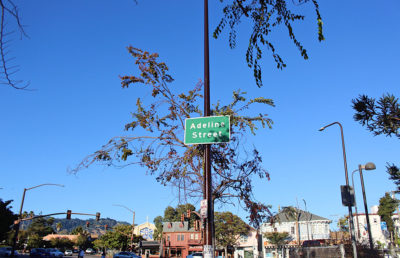 Photo of Adeline Street sign