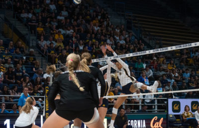 Image of Girls Volleyball