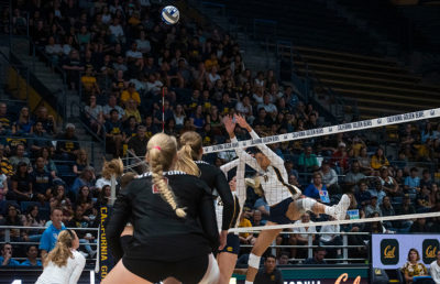 Photo of Women's Volleyball