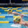 Image of Female Swimmers