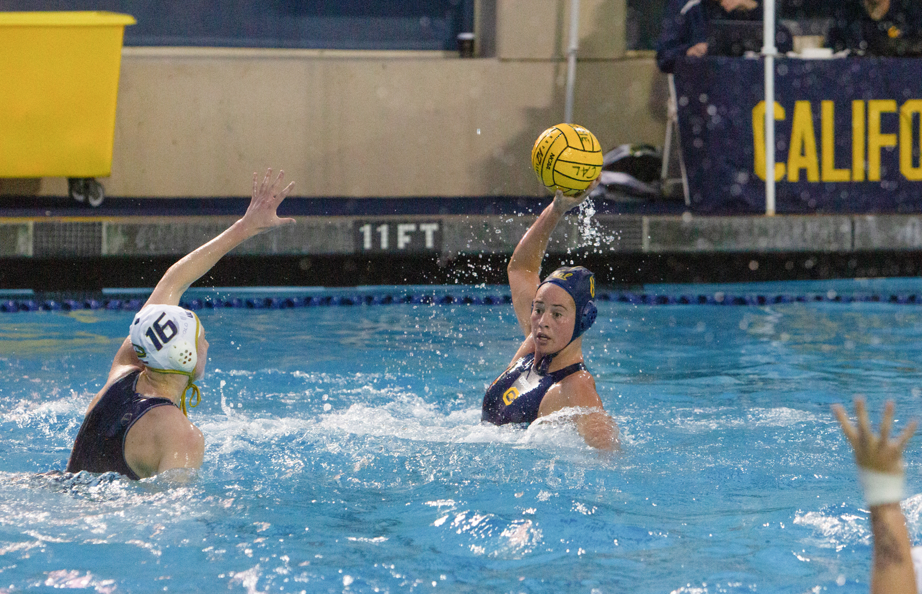 Image of women's water polo