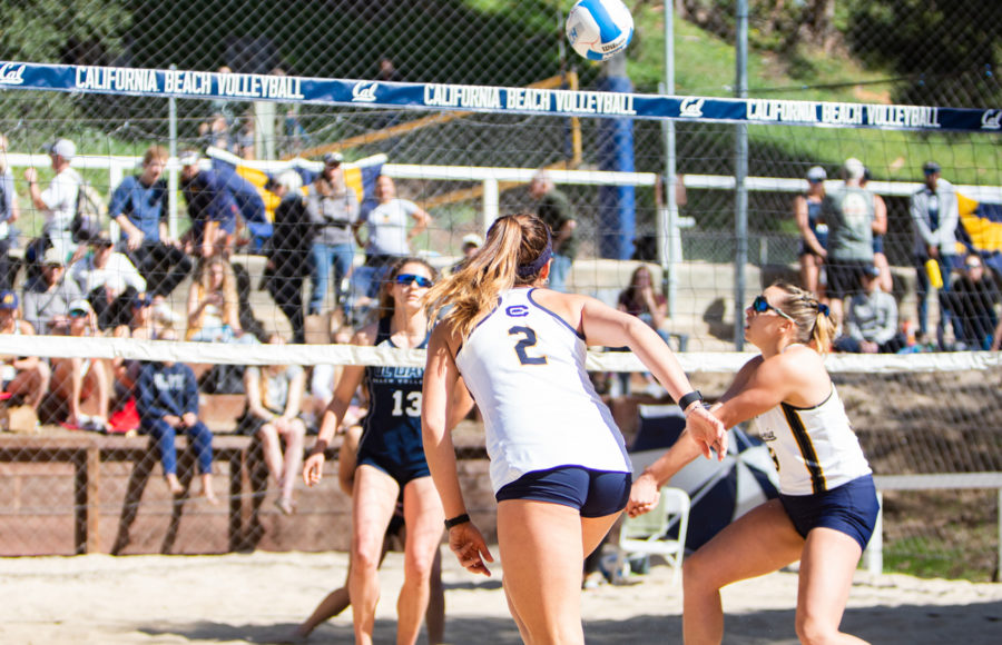 Photo of Cal Beach Volleyball