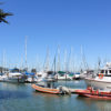 Photo of boats at the Berkeley Marina