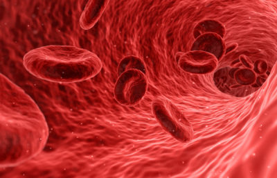 photo of red blood cells