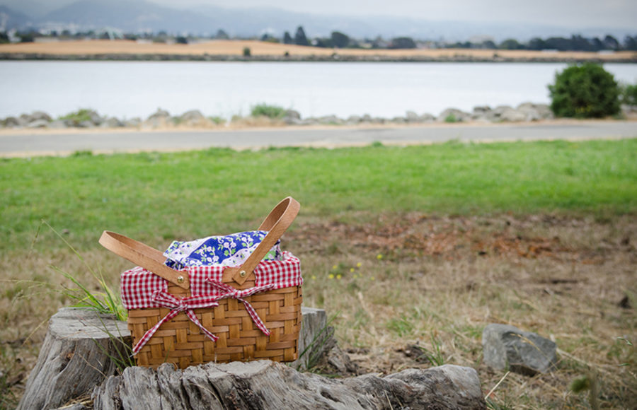 photo of a picnic basket by the water