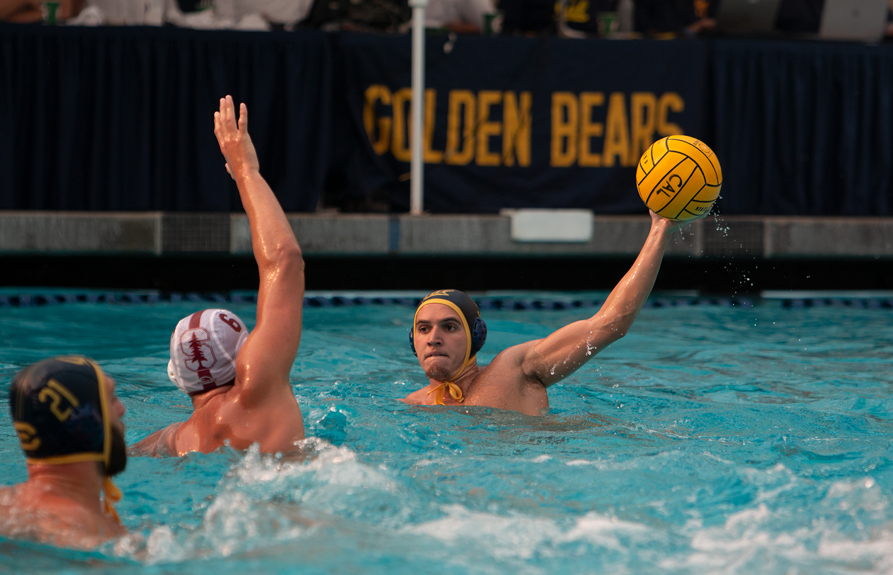 photo of a Cal Men's Waterpolo player