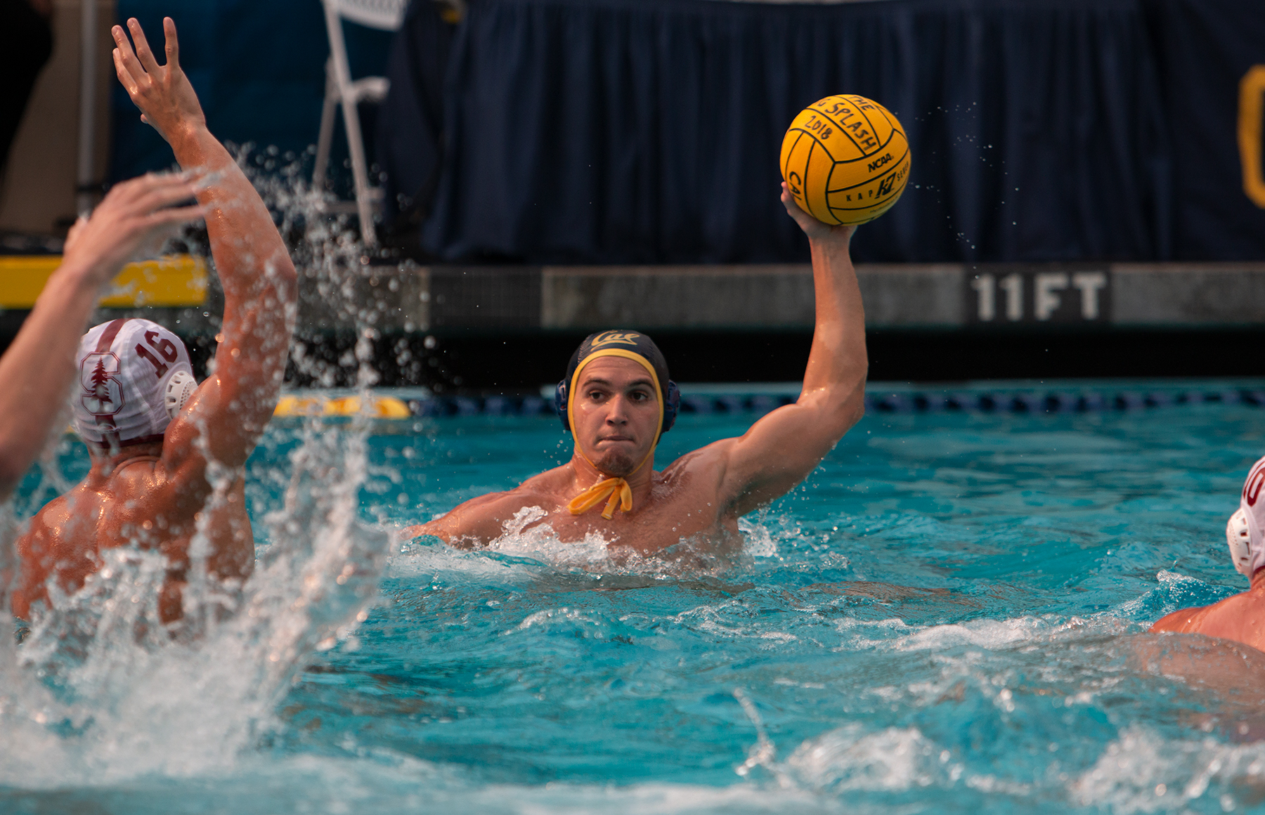 photo of a Berkeley men's water polo player