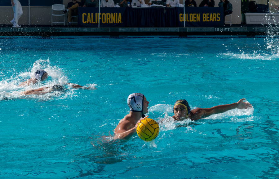 Photo of a Cal men's water polo game