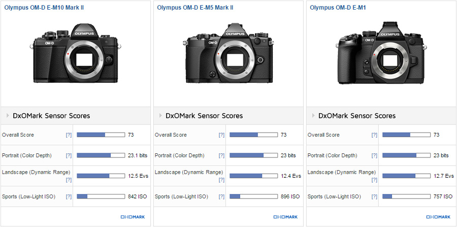 Olympus E-M10 Mark II Sensor Review and Test Results