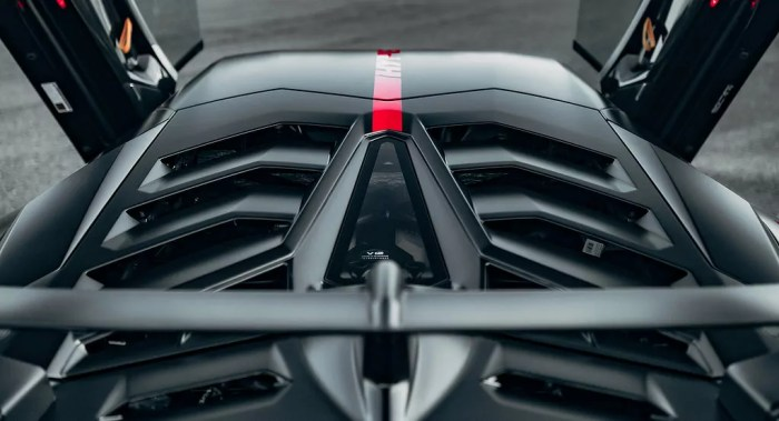 Lamborghini SVH by HYPE Engine Cover