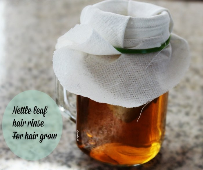 nettle leaf for natural hair growth