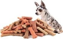 dog overeating on treats