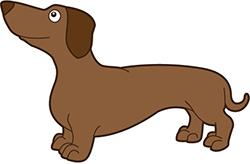 dachshund cartoon