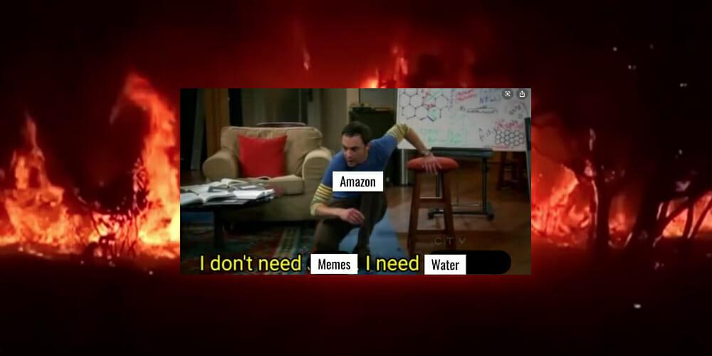 the amazon rainforest is