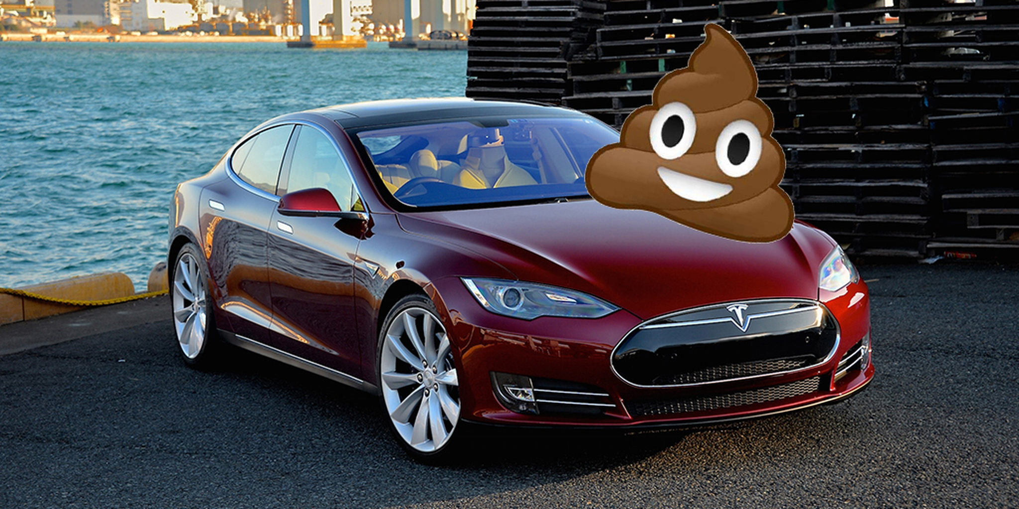 Chicago Man Vows To Hunt Down Whoever Pooped On His Tesla