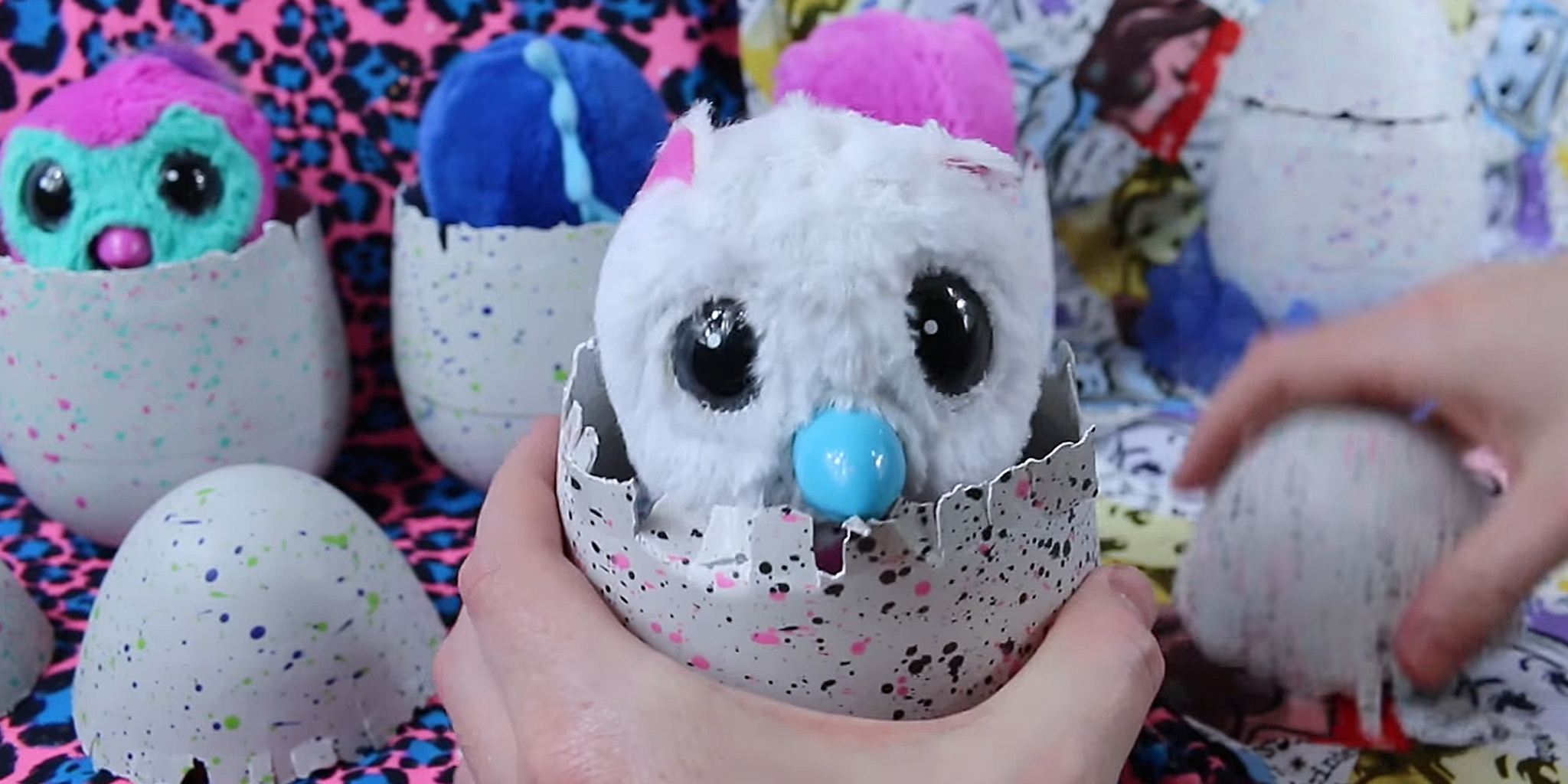 people say their hatchimals