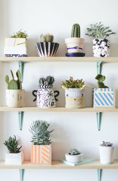 vintage bedroom ideas with plants 10 Plants that will bring a pozitive vibe to your home | Daily Dream Decor | Bloglovin'
