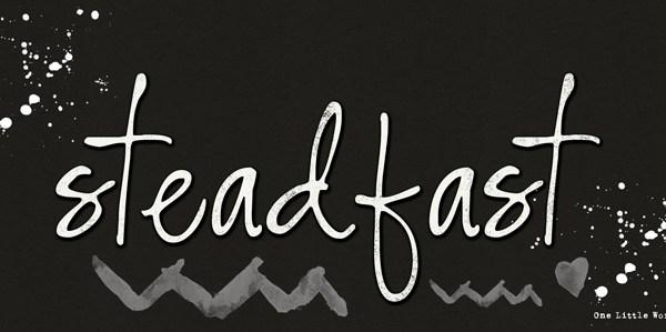 One Little Word 2015 :: Steadfast
