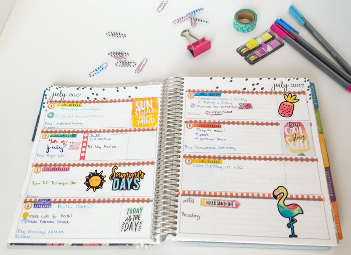 image about May Books Planner named Evening meal Creating with Could possibly Guides Dinner Planner