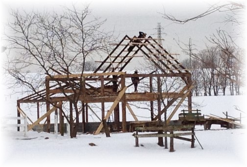 Amish men building barn 2/12/14