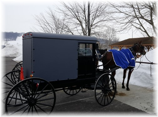 Amish buggie at BB's 1/29/16