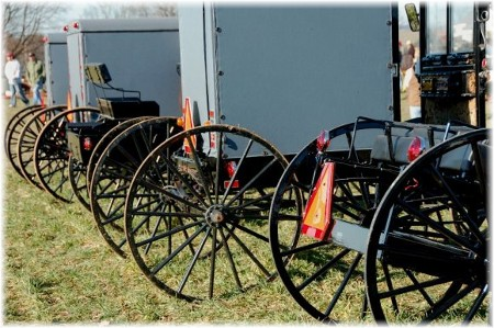 Photo of Amish buggies for sale (photo by Doris High)