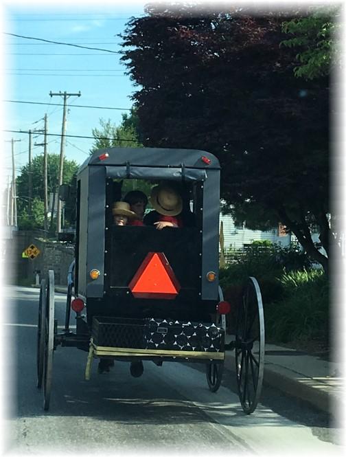 Amish buggy 5/18/17