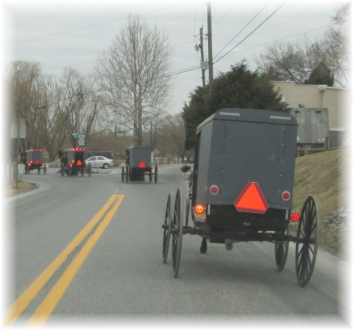 Amish traffic buggy, Intercourse, PA 3/14/14