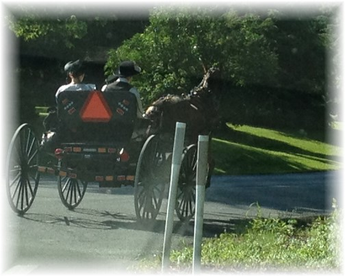 Amish couple going to church 6/29/14