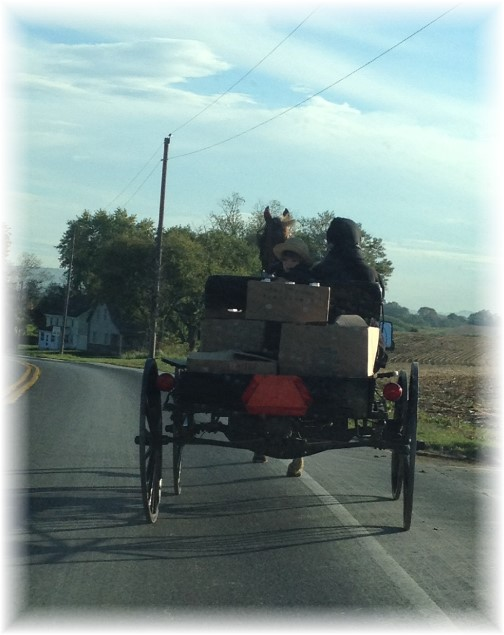 Amish hauling in Lancaster County PA 10/14/15