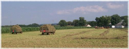 Amish hay harvest on Kraybill Church Road 7/26/12