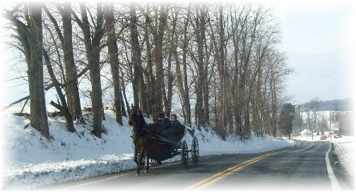 Amish youth on way to youth meeting