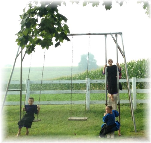 Swings at Amish one room schoolhouse 9/2/15