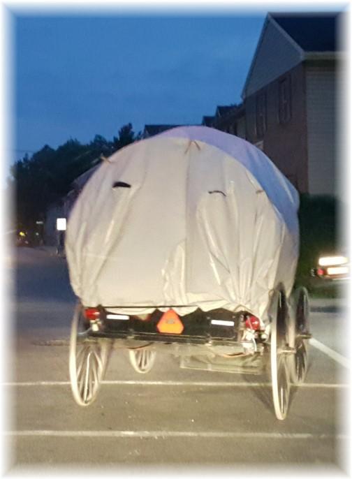 Conestoga buggy 6/5/17