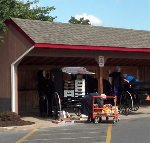 Amish bulk shopping at Costco 9/13/13