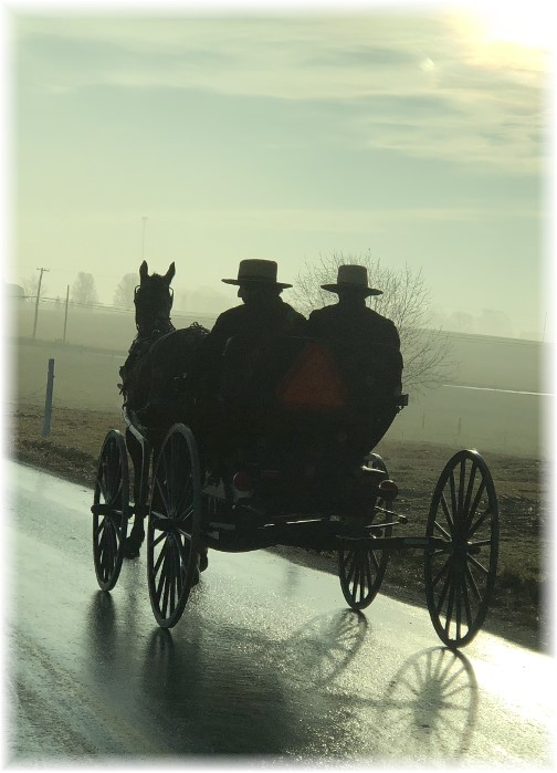 Amish men out on a foggy morning 2/15/18