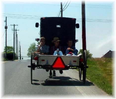 "Old order Mennonite children riding in ""pickup"""