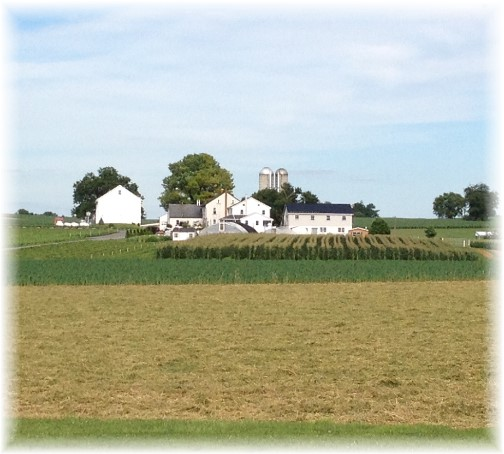 Lancaster County Amish farm 6/24/15